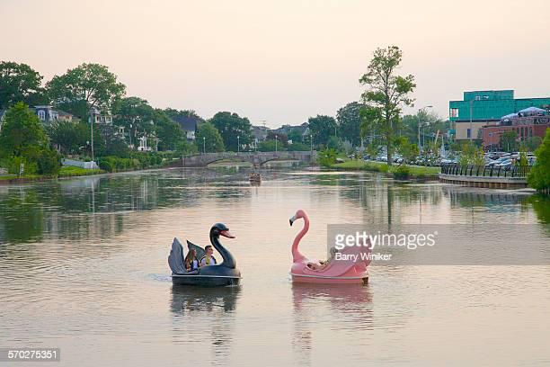 Swan pedal boats, Asbury Park, NJ