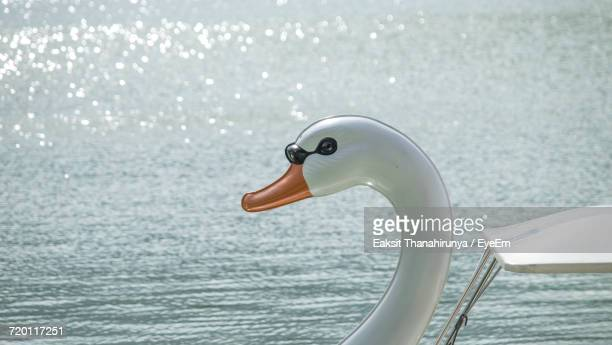 Swan Shape Pedal Boat In Lake