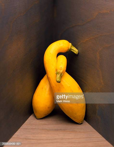 Swan shaped squash on stained wood