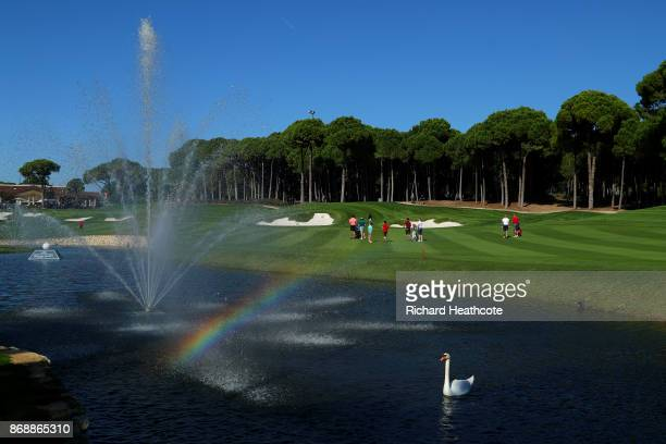 A swan swims in the lake beside the 18th hole as players practise ahead of the Turkish Airlines Open at the Regnum Carya Resort on October 31 2017 in...