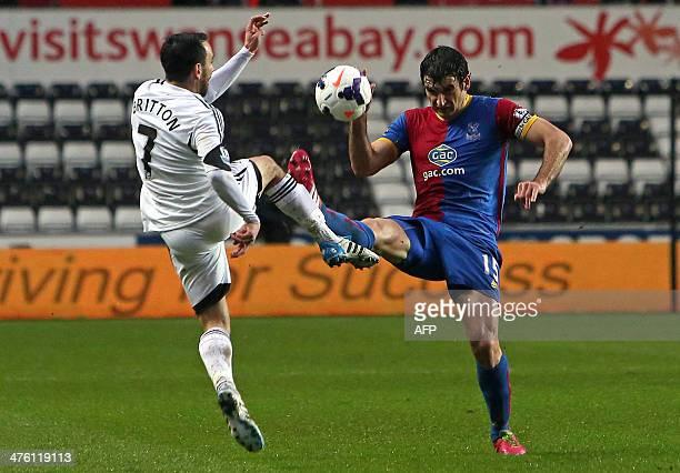 Swansea City's English midfielder Leon Britton vies with Crystal Palace's Australian midfielder Mile Jedinak during the English Premier League...