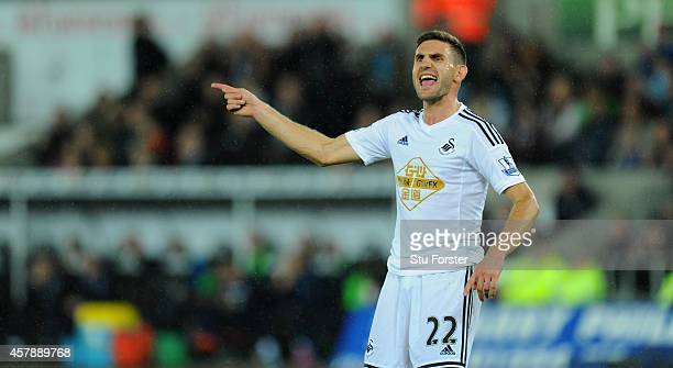 Swansea player Angel Rangel reacts during the Barclays Premier League match between Swansea City and Leicester City at Liberty Stadium on October 25...