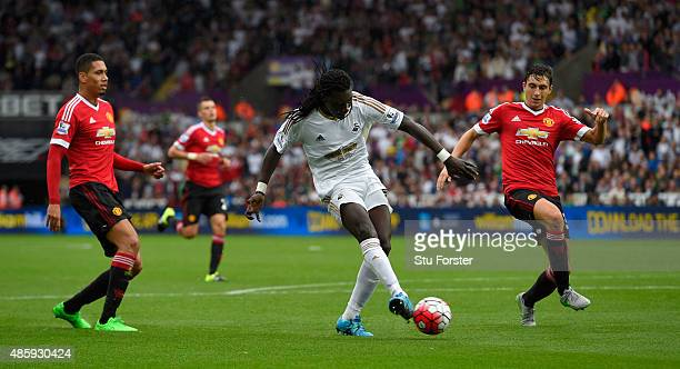 Swansea striker Bafetimbi Gomis shoots to score the second Swansea goal during the Barclays Premier League match between Swansea City and Manchester...