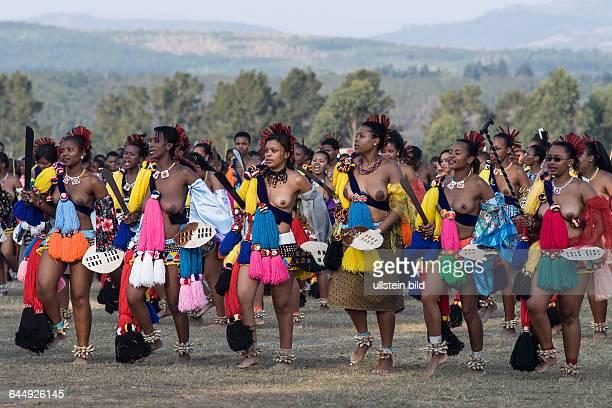 Swazi Mädchen tanzen den Reeddance