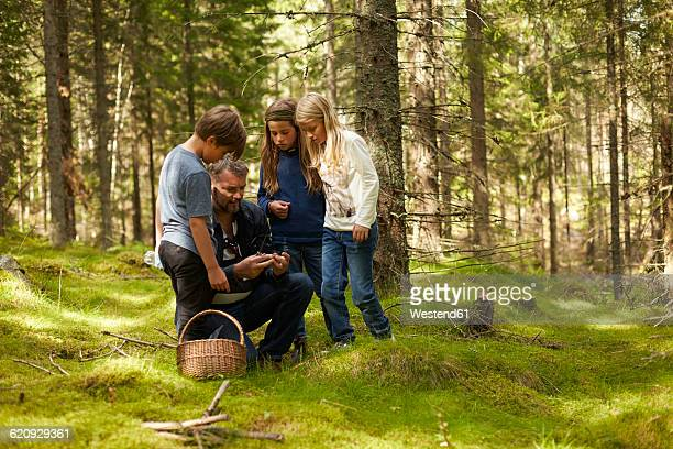 Sweden, father and three children collecting mushrooms in the forest