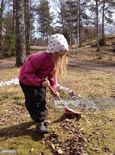 Sweden, Girl (6-7 years) raking leaves in garden