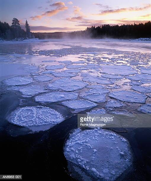 Sweden, ice patches on river at sunset, trees line far shore