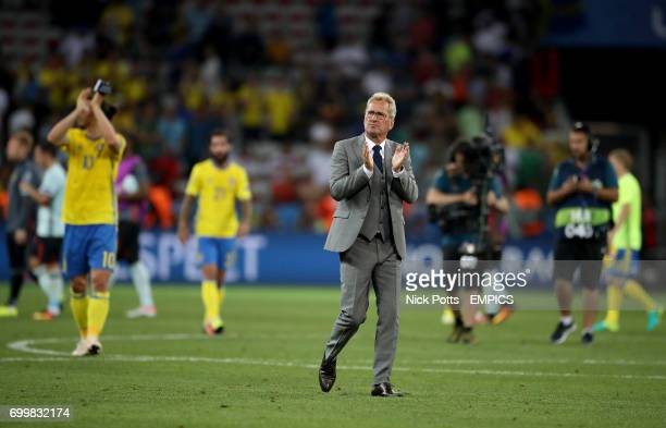 Sweden manager Erik Hamren