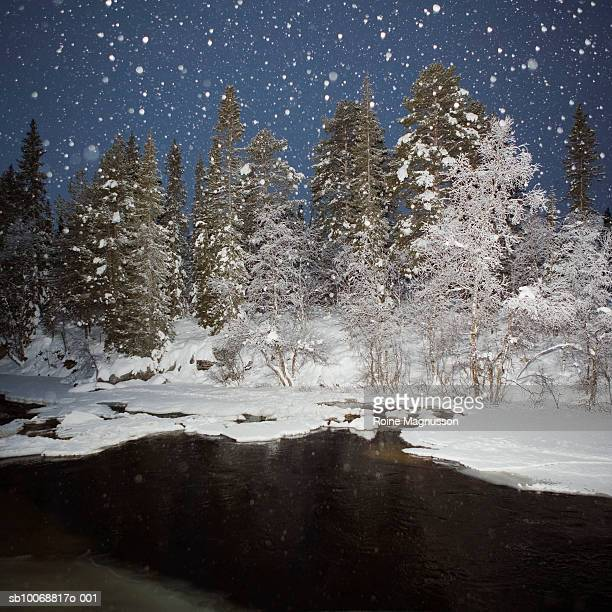 sweden, porjus norrbotten, snowing - nautre stock pictures, royalty-free photos & images