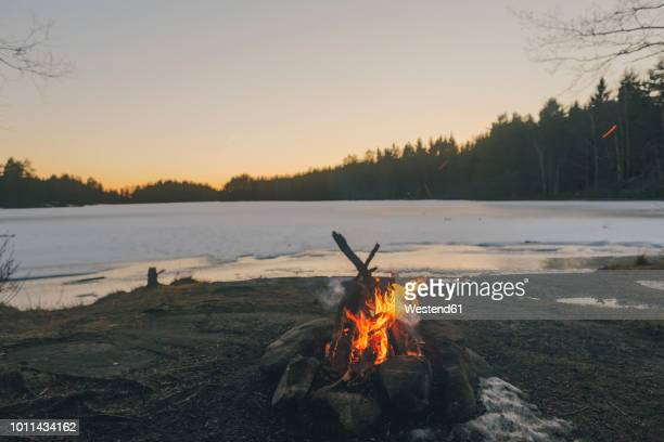 Sweden, Sodermanland, campfire at lakeside in winter