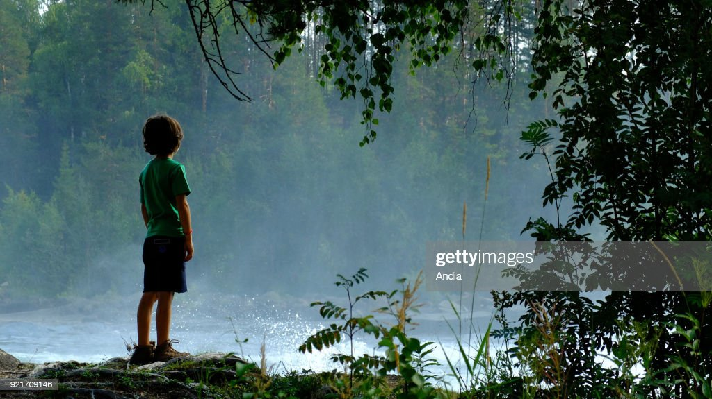 Sweden, Swedish Lapland. . Close to the Arctic circle, Storforsen Waterfall in the surrounding area of Arvidsjaur (rapids that stretch over a distance of 5 km in which it drops 82 meters), the biggest natural cataracts in Europe. Natural site located at the junction of the Pite and Vitbacken rivers. Silhouette of a child on the bank, into the light, looking at the rapids.