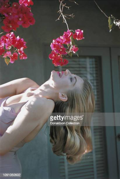 Swedish actress Anita Ekberg poses for a photo on April 22 1956 in Palm Springs California