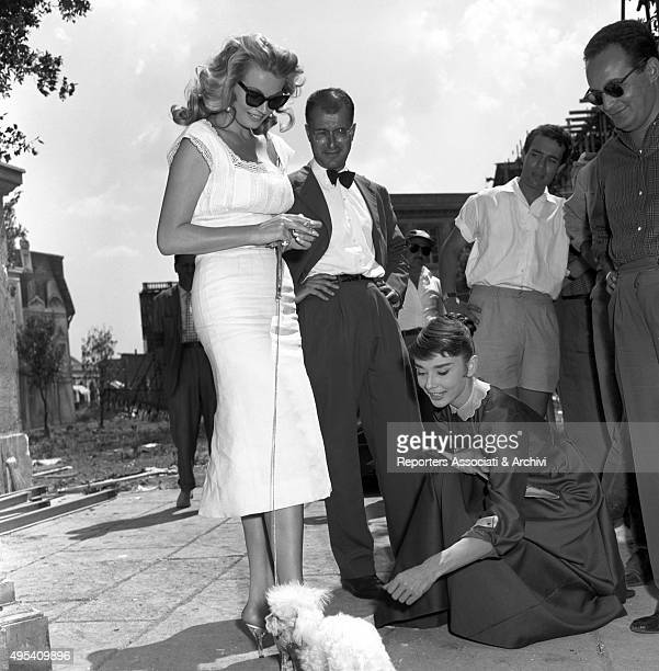 Swedish actress Anita Ekberg walking her dog in the streets of Cinecittà She's shooting the film War and Peace together with British actress Audrey...