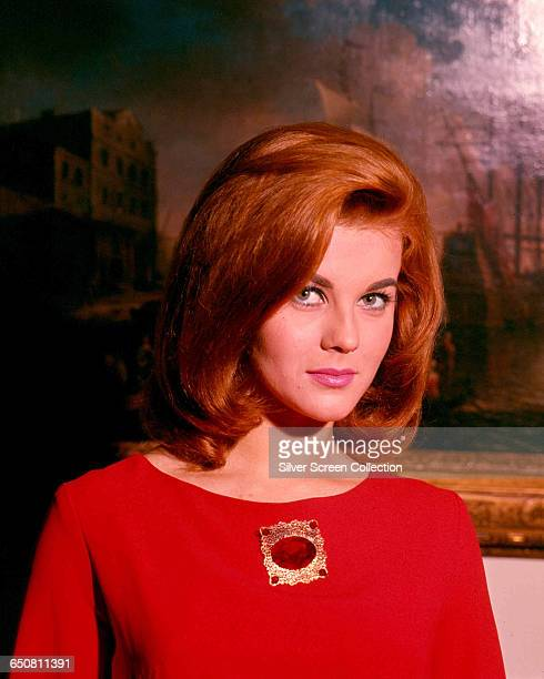 Swedish actress AnnMargret poses in front of an oil painting circa 1965