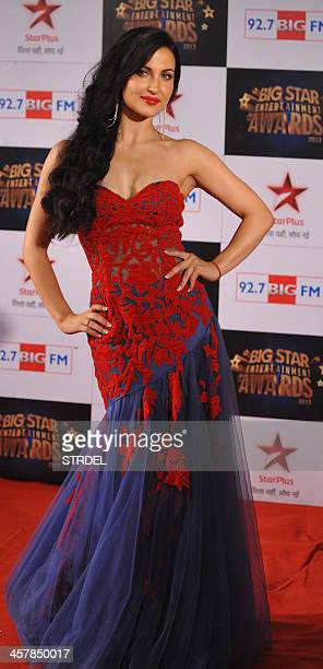 Swedish actress Elli Avram attends the BIG Star Entertainment Awards ceremony in Mumbai on December 18 2013 AFP PHOTO/STR