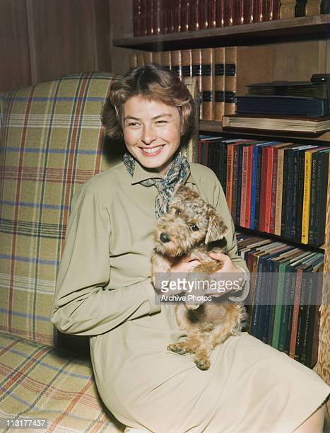Swedish actress Ingrid Bergman with a small dog circa 1940's