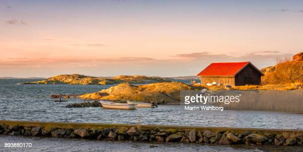 swedish coastline in morning - sweden stock pictures, royalty-free photos & images