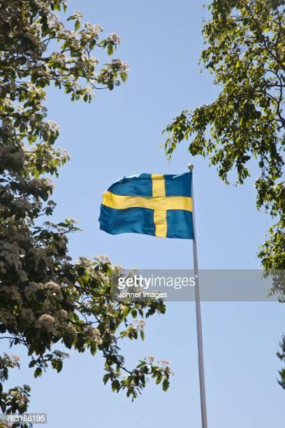 swedish flag against sky - エーランド ストックフォトと画像