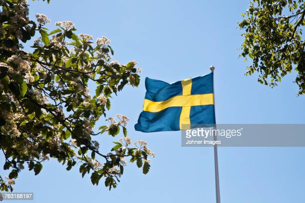Swedish flag against sky