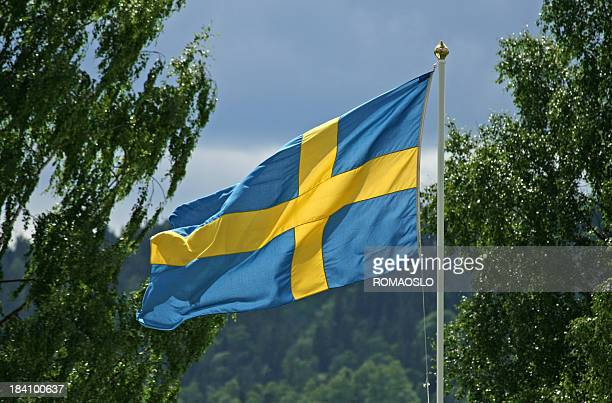 Swedish flag in sun and wind, Sweden