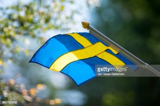 Swedish flag on pole