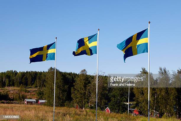 swedish flags over rural landscape - flagpole stock pictures, royalty-free photos & images