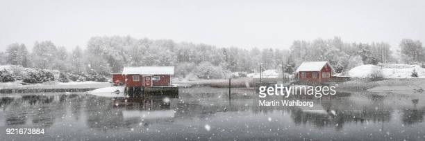 Swedish idyllic coastline in winter