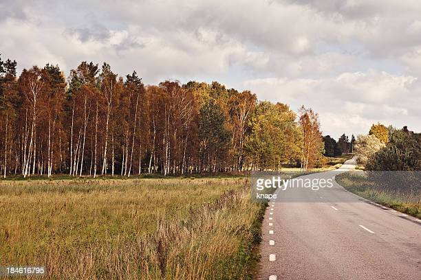 Swedish landscape in autumn