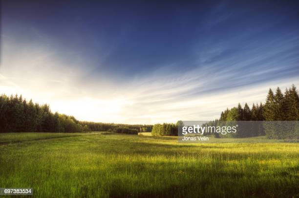 swedish landscape - non urban scene stock pictures, royalty-free photos & images