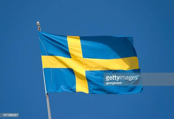 Swedish National Flag