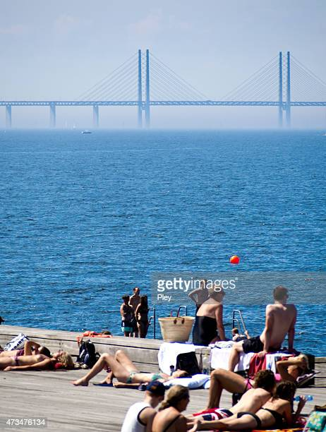 swedish summer - oresund region stock photos and pictures