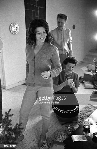 Swedishborn American actress AnnMargret entertains unidentified guests at home Los Angeles California 1963