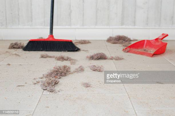 sweep up - dustpan and brush stock pictures, royalty-free photos & images