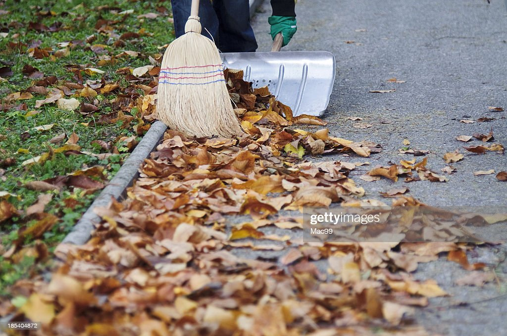 Sweeping autumn leaves : Stock Photo