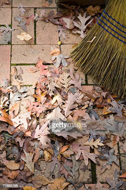 Sweeping dried leaves in autumn