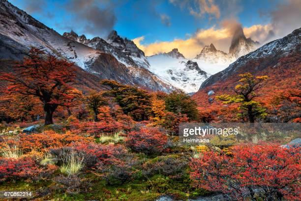 Sweet Autumn in Patagonia