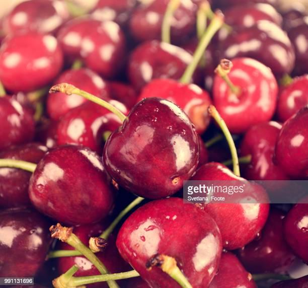 sweet cherries - svetlana stock photos and pictures