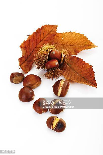 Sweet chestnuts and leaves on white background, close-up