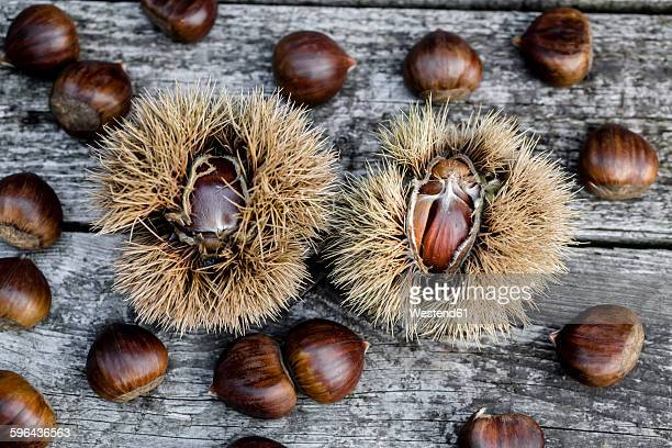 Sweet chestnuts on wood