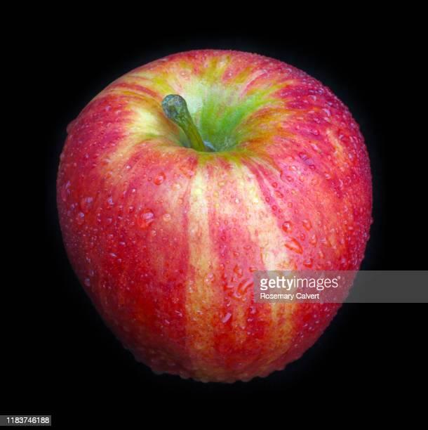 sweet & crisp rubens apple, civni cultivar, on black square. - apple stock pictures, royalty-free photos & images