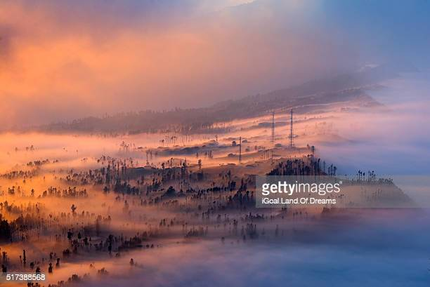sweet dreams beautiful fog in lawang valley bromo-tengger-semeru national park east java, indonesia. - mt semeru stock pictures, royalty-free photos & images