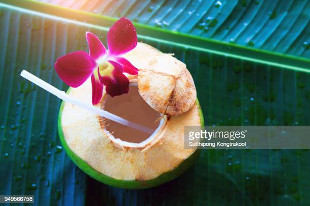sweet green coconuts water with drinking straw on banana leaf. coconut tropical fruit in koh samui, phangan and koh tao , surat thani and chumphon at thailand. - fruit exotique photos et images de collection