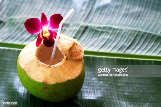 Sweet green coconuts water with drinking straw on banana leaf. Coconut tropical fruit in Koh Samui, PhaNgan and koh tao , surat thani and chumphon at Thailand.