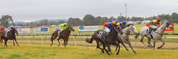 AUS: Wodonga & District Turf Club Race Meeting