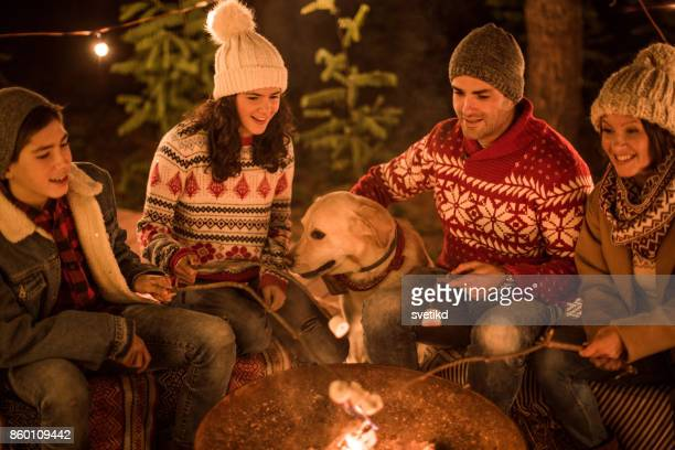 sweet holidays - dog eats out girl stock photos and pictures