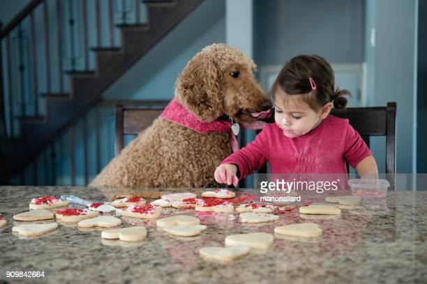 sweet little girl with her dog in the kitchen - valentine's day holiday stock pictures, royalty-free photos & images