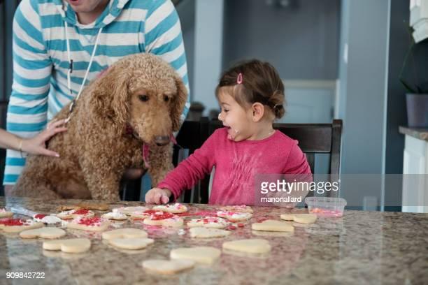 lief klein meisje met haar hond in de keuken - naughty valentine stockfoto's en -beelden
