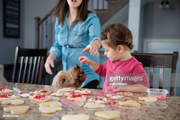 sweet little girl with her dog in the kitchen - dog eats out girl stock photos and pictures