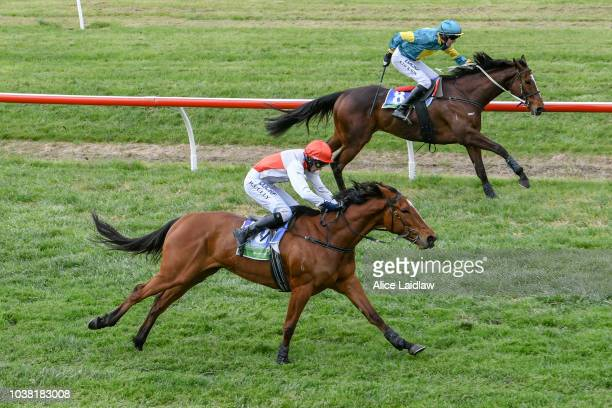 Favonski ridden by Georgina Cartwright wins the Vickery Brothers BM64 Handicap at Coleraine Racecourse on September 23 2018 in Coleraine Australia