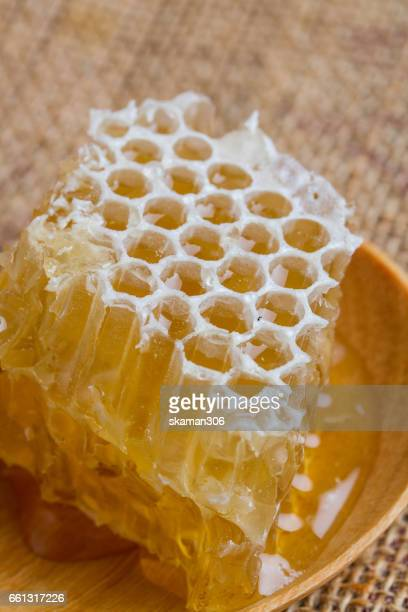 Sweet nature honeycomb on wooden spoon